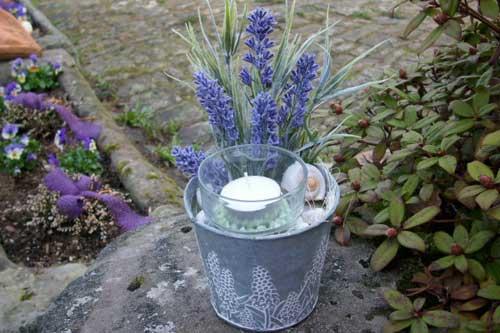 ghiveci flori lavanda