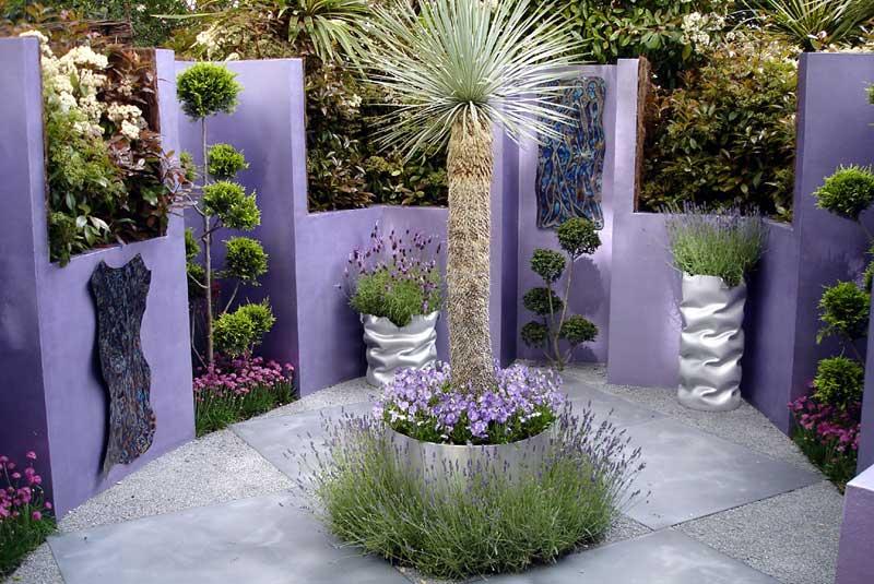 gradina cu flori de lavanda